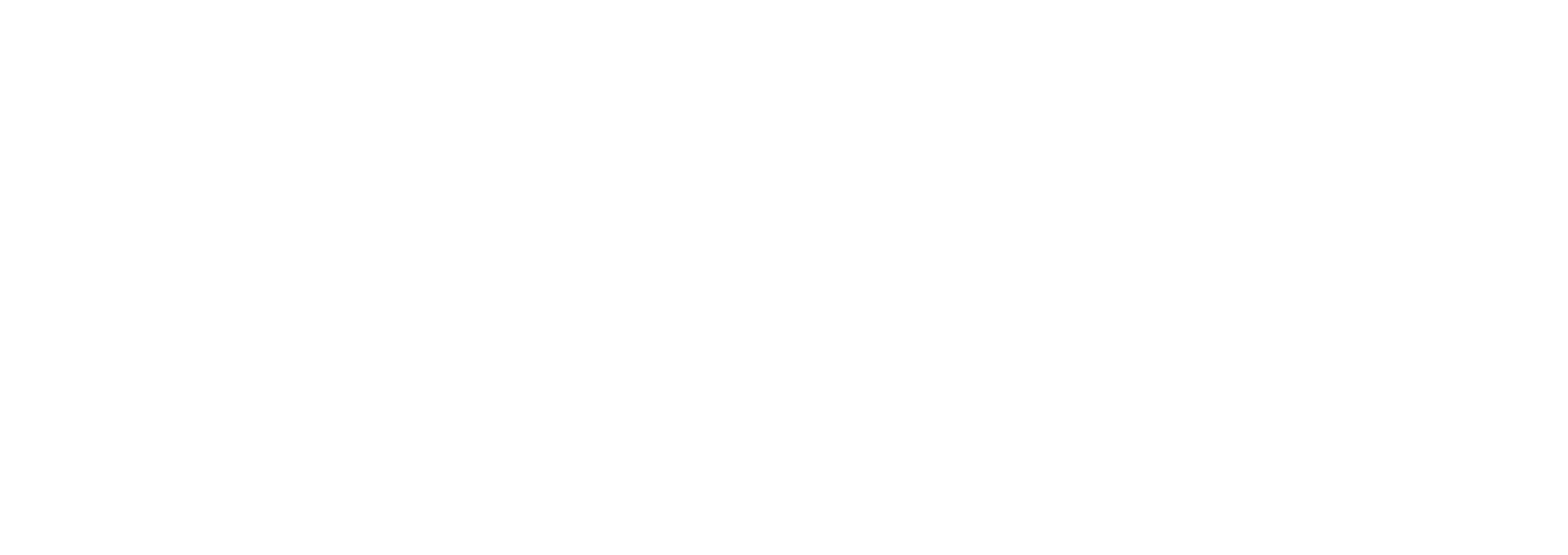 Moblize.it LLC